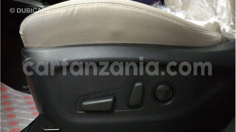 Big with watermark kia sorento arusha import dubai 10455