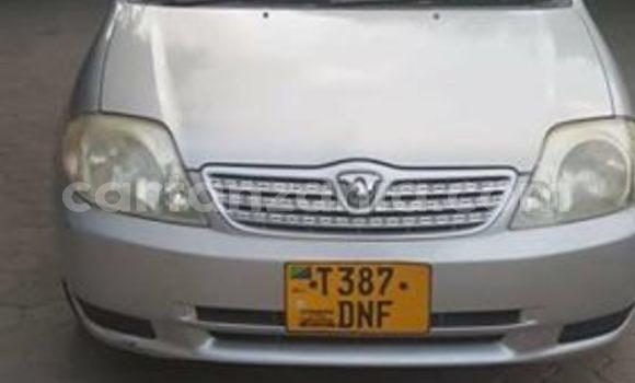 Buy Used Toyota Allex Silver Car in Dar es Salaam in Dar es Salaam