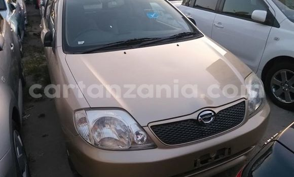 Buy Imported Toyota Runx Brown Car in Dar es Salaam in Dar es Salaam