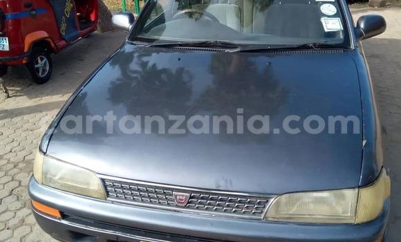 Buy Used Toyota Corolla Other Car in Dar es Salaam in Dar es Salaam