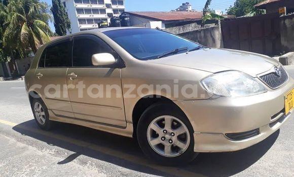 Buy Used Toyota Allex Beige Car in Dar es Salaam in Dar es Salaam