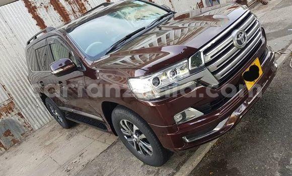 Buy Used Toyota Land Cruiser Brown Car in Dar es Salaam in Dar es Salaam