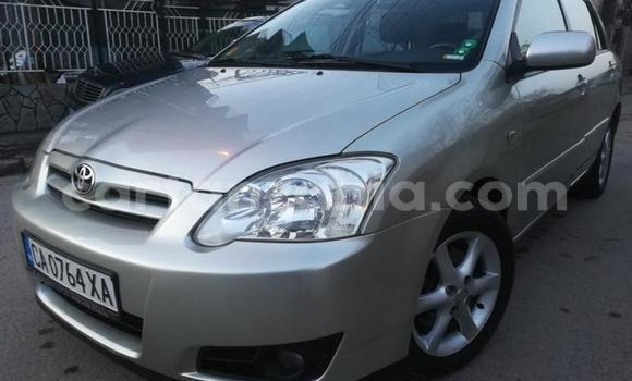 Buy Used Toyota Runx Silver Car in Arusha in Arusha