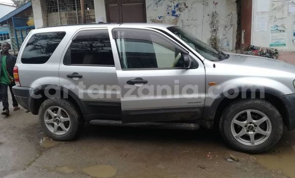 Buy Used Ford Escape Silver Car in Mbeya in Mbeya