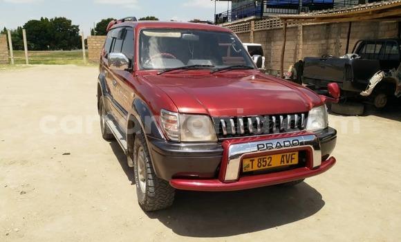 Buy Used Toyota Prado Red Car in Dodoma in Dodoma