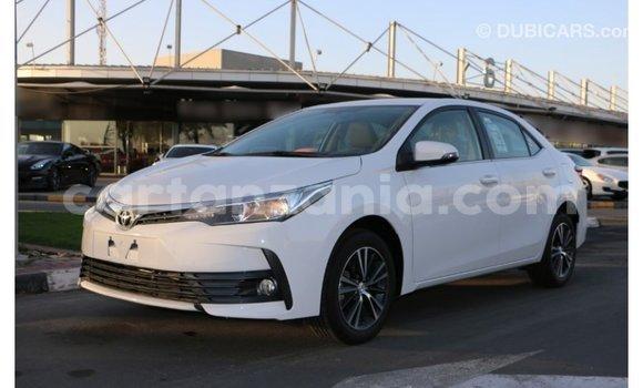 Buy Import Toyota Corolla White Car in Import - Dubai in Arusha