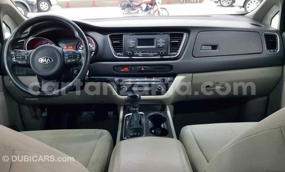 Buy Import Kia Carnival Other Car in Import - Dubai in Arusha