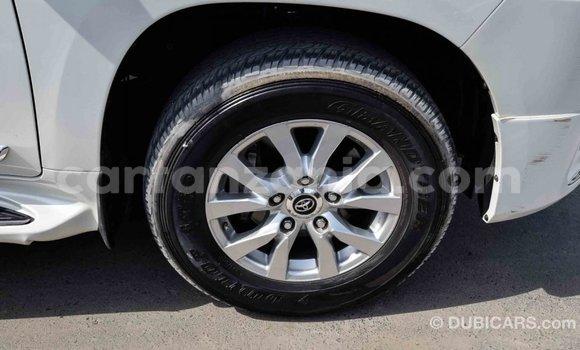 Buy Import Toyota Land Cruiser White Car in Import - Dubai in Arusha