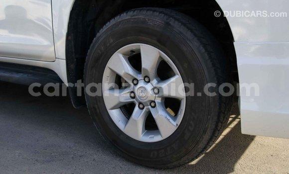 Buy Import Toyota Prado White Car in Import - Dubai in Arusha