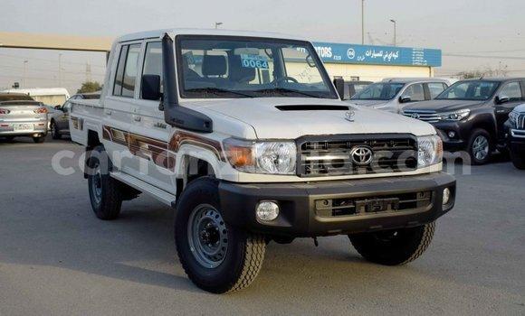 Buy Import Toyota Pickup White Car in Import - Dubai in Arusha