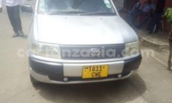 Buy Used Toyota Probox Silver Car in Arusha in Arusha