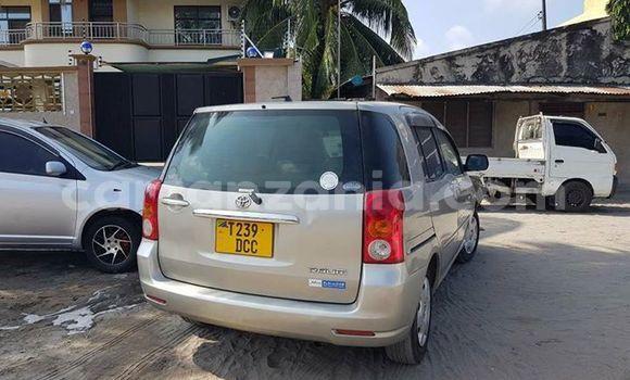 Buy Used Toyota Raum Silver Car in Karatu in Arusha