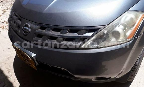 Buy Used Nissan Murano Silver Car in Karatu in Arusha