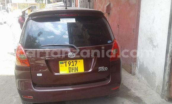 Buy Used Toyota Spacio Other Car in Karatu in Arusha