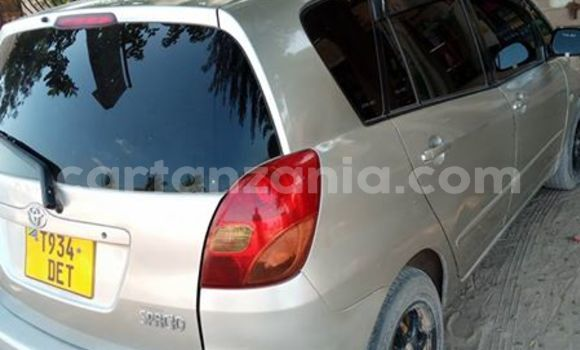 Buy Used Toyota Spacio Silver Car in Karatu in Arusha