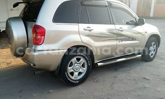 Buy Used Toyota RAV4 Silver Car in Karatu in Arusha